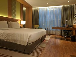 Luxurious Hotel relatively close to Airport, excellent service and good food
