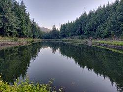 Tani-Jubber Lake