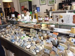 Yummy cheese store
