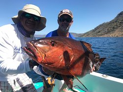Check out this Snapper!!! Wowza