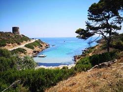 Parco nazionale dell`Asinara