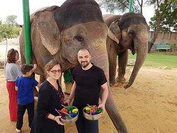 Elefant Safari@EleSafari