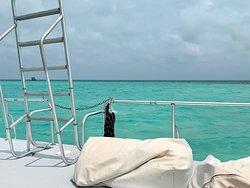 Chill Cruise