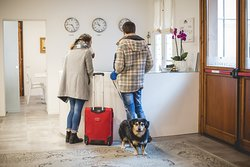 pet friendly - hotel amico a 4 zampe
