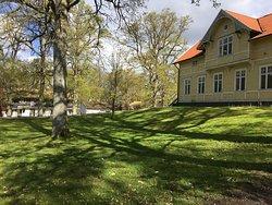Smuk park med gamle træer