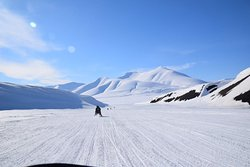 in the winderness of svalbard
