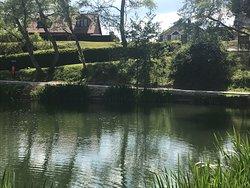 Lovely park