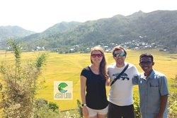 Lingko Cara at Flores Island. Spider Rice terrace field.