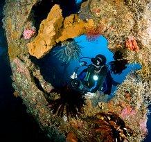 Bali Diving Academy Tulamben
