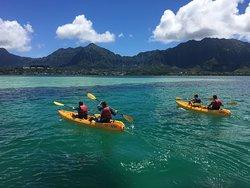 Kama'aina Kayak and Snorkel EcoVentures