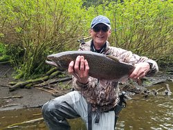 Steelhead caught on fly...