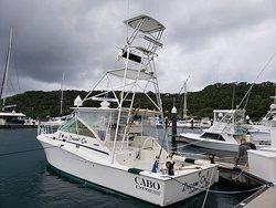 Dream On Sport Fishing