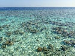 Mare lato oceano