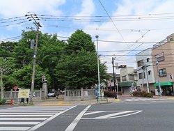 本郷通りから境内のみどりを見ます。右側にある通りが「蝉坂」への進入口。上中里駅に行きます。