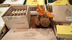 Moosie in the hotel store where you can find a nice selection of cigars and liquor. And yes, Moosie is over 21 years old!