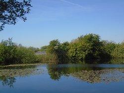 Blankaart Nature Reserve