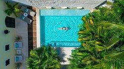 The Diplomat | Pool (395716909)