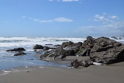 Sonoma Coast State Beach - Salmon Creek