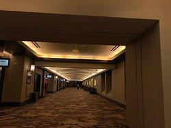 華やかな巨大カジノホテル