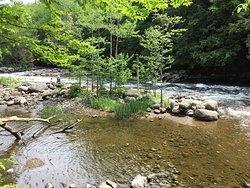 Minden Wild Water Preserve
