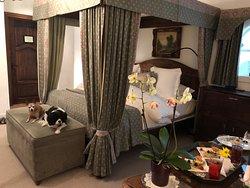 Quaint and pet friendly luxury hotel