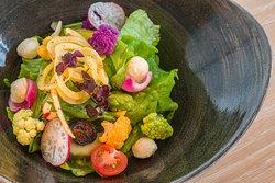 Max's Salad