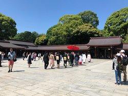 晴れの佳き日に、神前式の結婚式も執り行われていました。