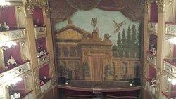 Interno Teatro Curci (Foto 2)
