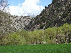 Another view of Birir Valley, KALASH, PAKISTAN.