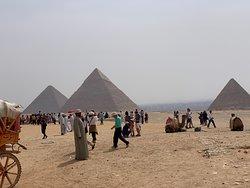 Pyramids & egyptian museum, Memphis/ Sakkara/ Dahshur, Nile dinner, bazaar and Old Cairo