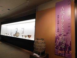 展示室景観一例