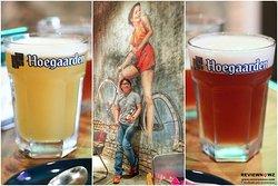 Singha Beer & Hoegaarden