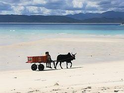 Madagascar, simplicité paradisiaque