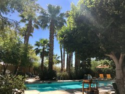 The definition of a true oasis in the desert!