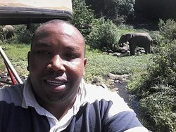 Lake Manyara national park Tanzania home Of elephants