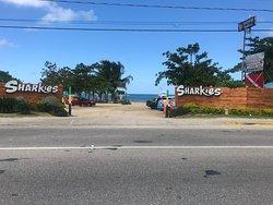 Sharkies Seafood Restaurant