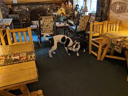 Beautiful pet-friendly and family atmosphere