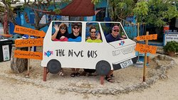 The Dive Bus