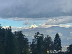 "Enjoy a day trip to Cotopaxi volcano, admire the beautiful Andes mountain range and enjoy a day away from the hustle and bustle of the city.   ""Nature sustains the universal life of all beings"" -Tenzin Gyatso"