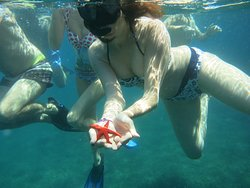 Archeobio snorkeling - Archaeo-bio snorkeling