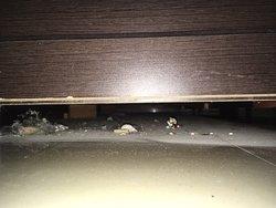 Unterm Bett