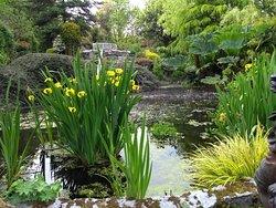 Homestead Woodland Gardens