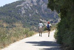 or hiking...