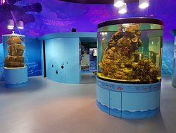 Riverwatch Aquarium and Visitor Centre