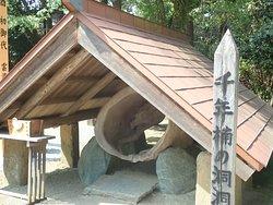 願いを掛けてくぐると良縁が結ばれると言われる樹齢1200年の大クスの一部で作られた木洞「洞洞木」