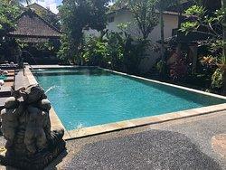 Paradise is Ubud