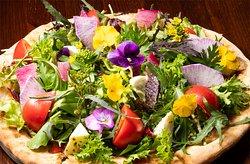 「プリマヴェーラ」季節のフレッシュ野菜を使ったサラダとモッツァレラのトマトピッツァ。香り豊かなハーブ、ワインヴィネガーとオリーブオイル。ヘルシーなレディースサイズで。