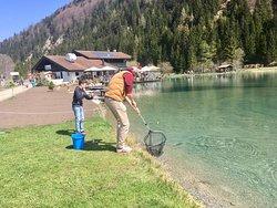 fischen am angelteich