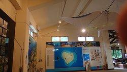 黒島ビジターセンターの天井には大きなマンタ
