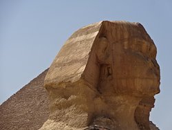 I finx it's the Sphinx again